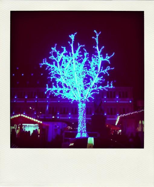 blau beleuchteter Baum